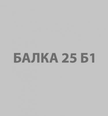 Балка 25Б1